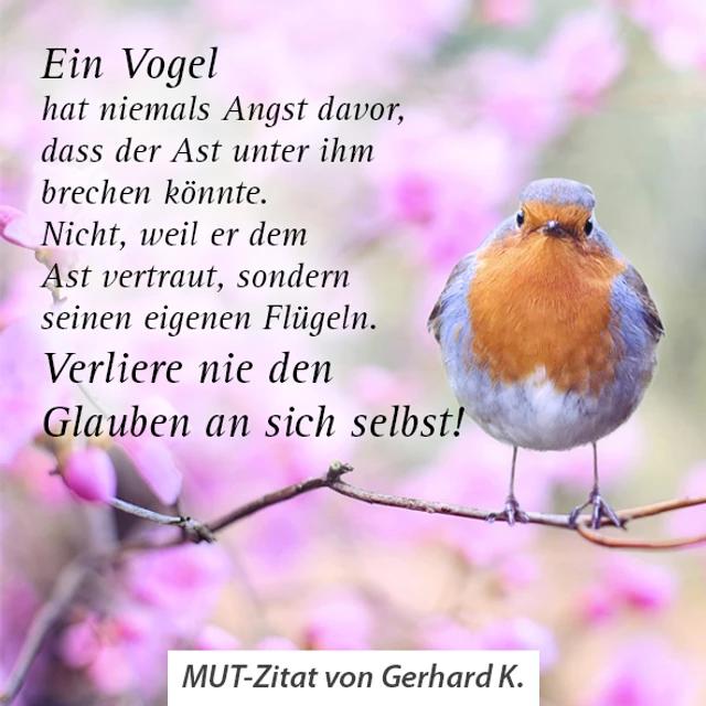 Zitat von Gerhard